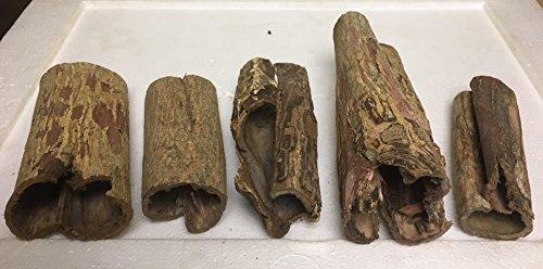 catappa-leaves 5 Bizarre Höhlen für natürlich gesundes Wasser, Aquarium Dekoration vom asiatischen Seemandelbaum/Marke (Größe 3 von 4)