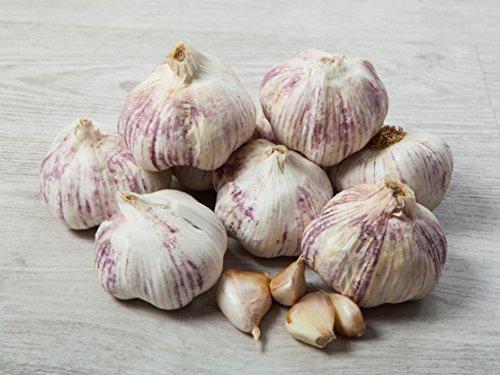 2 kg. Ajo Rojo-Violeta - Selección Gourmet