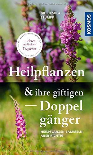 Heilpflanzen und ihre giftigen Doppelgänger: Heilpflanzen sammeln, aber richtig