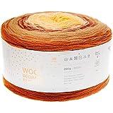 Rico Creative Wool Degrade Super 6 - Ovillo de lana para tejer y ganchillo