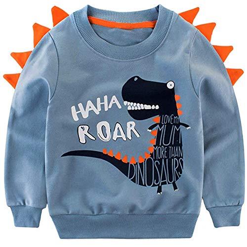 Little Hand Jungen Swearshirt niedlichen Ausflug Kleidung warmen Dinosaurier Pullover 92 1-2 Jahre