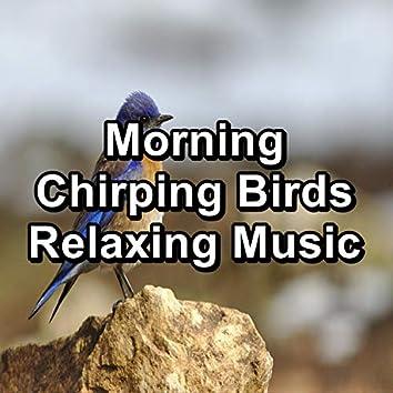 Morning Chirping Birds Relaxing Music