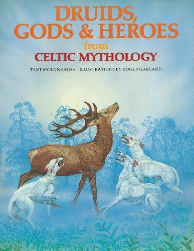 Druids, Gods and Heroes from Celtic Mythology (World Mythologies)