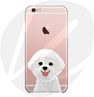Amazon.es: bichon