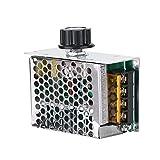Vipxyc Regulador de Voltaje, Controlador de Velocidad de Motor de CA de 4000 W con capacitancia Dual, regulador de Velocidad eléctrico de 220 V para Horno eléctrico, Calentador de Agua, lámparas