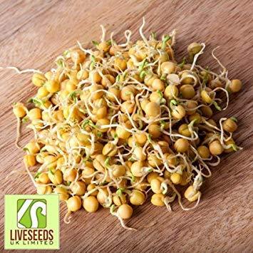 Shop Meeko 500g: Liveseeds - Les graines germées de pois jaunes Graines 500g / 750g / 1 kg (500g)