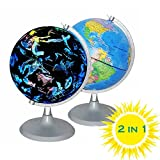 CYHO Illuminated World Globe - USB 2 in 1 LED Desktop World Globe