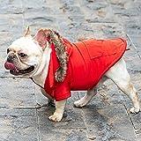 BCASE, Abrigo para Perro, con Capucha de Pelos, Ropa para Mascotas, Resistente al Agua y al Viento con Forro Interior de Algodón Suave y Cálido, Perros y Gatos. Color Rojo. Tallas S, M, L y XL