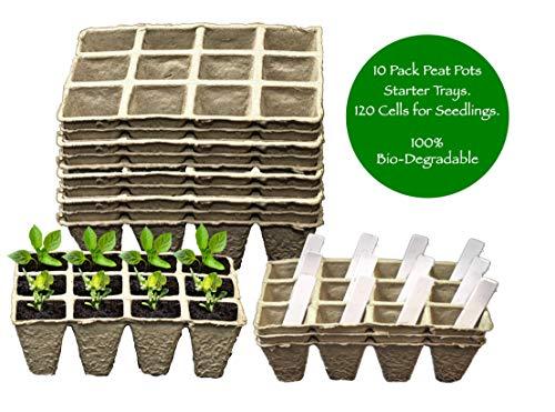 seedling starter kit - 6