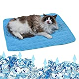 TYTO Pet Cooling Mat for Dogs Cats Ice Silk Pet Self Cooling Pad Blanket in Summer, Hot Weather Sleeping Mat for Pet Beds/Kennel /Sofa/Floor/Car Seats Cooling (28x22in/70x55cm)