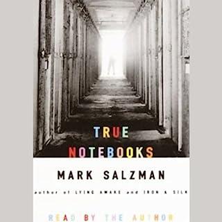 True Notebooks audiobook cover art