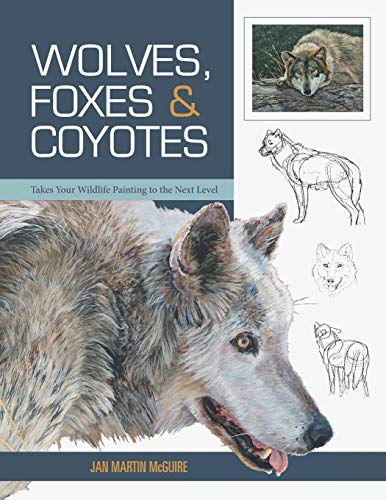 wolf drawing book - 1