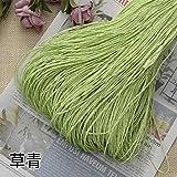 Hilo de Paja de Rafia Crochet para Tejer DIY Sombrero de Paja de Verano Bolsos Cojines Cestas Material Hilo 500 g/Lote, Verde