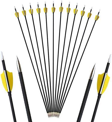 AMEYXGS 6/12 Piezas Tiro con Arco Flechas de Carbono 29.5