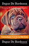 Dogue De Bordeaux Training Book for Dogs & Puppies By D!G THIS DOG Training, Easy Dog Training, Professional Results, Training Begins from the Car Ride Home, Dogue De Bordeaux (English Edition)