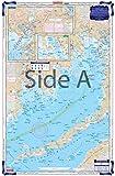 Waterproof Charts, Coastal Fishing, 61F Buzzards Bay and Nantucket Sound