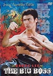 the big boss bruce lee movie download in hindi