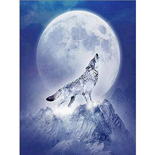 Ajwkob Pintar por números para Adultos Lobo Animal Equipo de la Pintura al óleo de la Lona de DIY, Pintura del Dibujo con el Pigmento de acrílico de Las brochas (30x40cm)