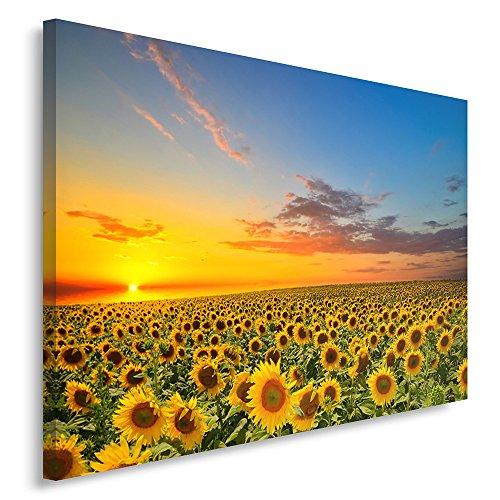 Feeby Frames, Cuadro en lienzo, Cuadro impresión, Cuadro decoración, Canvas de una pieza, 80x120 cm, PRADO, FLORES, GIRASOL, CIELO, NATURALEZA, PAISAJE, AMARILLO