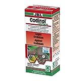 *JBL Oodinol Plus 250 Heilmittel gegen Samtkrankheit für Aquarienfische, 100 ml