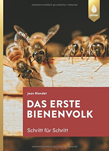 Das erste Bienenvolk – Schritt für Schritt