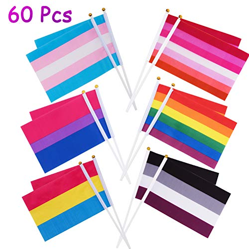 Whaline 60 Pack Gay Pride Stick Flags, Rainbow Small Mini Flags Transgender Asexual Bisexual Pansexual Lesbian Flags LGBT Party Parade Decorations (10 Pieces Each of 6 Patterns)