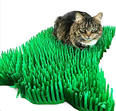 CATMAT Tissue Paper Grass Mat Toy for Cats and Kittens crinkly interactive hunting hiding fun green (Pack of 2) good for indoor cats. arrives packed flat