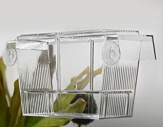 水族館の魚の繁殖箱ダブルグッピー孵化インキュベーター隔離ボックス (20 CM)