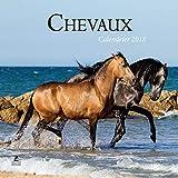 Chevaux, calendrier 2018