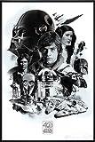 Star Wars 40th Anniversary Poster Montage (93x62 cm)