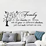 decalmile Pegatinas de Pared Frases Family Like Branches on a Tree Vinilos Decorativos Letras Árbol Familia Adhesivos Pared Salón Dormitorio Comedor