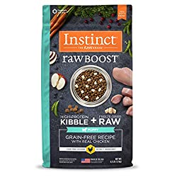 Best High Protein Dog Food To Enrich Your Pet S Diet