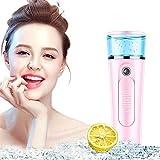 Nano ion Hidratante Limpiador Facial Vaporizador Facial Humidificador Facial Sistema Hidratante spa en el Hogar Belleza Facial nano Facial Humectador para la Piel (Pink)