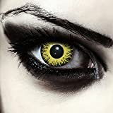 Lentillas de color amarillo para Halloween...