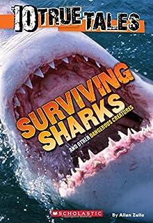 Surviving Sharks (10 True Tales)