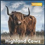 Highland Cows Calendar 2022: Official Highland Cows Calendar 2022 ,12 months, Wild Animals ,Square 2022 Calendar