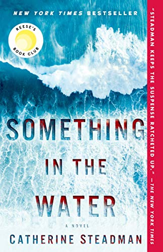 Something in the Water: A Novel