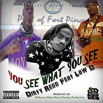 You See, What You See (feat. Law D)