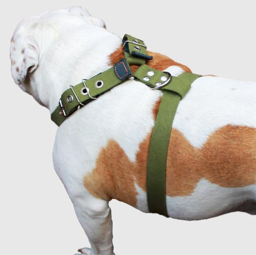 Cotton Web Dog Harness Large. Fits Girth 29