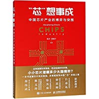 Decipering China's Chips Industry (Chinese Edition)