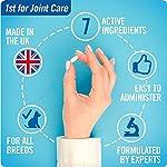 JOINTSURE Compléments Alimentaires pour Les articulations des Chiens | 120 comprimés | Moule Verte, glucosamine chondroitine Naturelle pour Le Soin articulaire de Votre Chien. #3