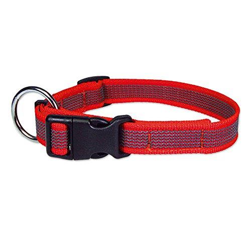 Schecker Grip Colour Rainbow Rot Halsband Halsumfang S/M: 23-44 cm Verstellbar rutschfest 24 eingearbeitete Gummi-Filamente O-Ring mit Zugentlastung. 20 mm Breite