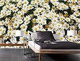Fotomurales Plantas y Margaritas Papel Pintado Fotográfico Papel pintado tejido no tejido Decoración de Pared decorativos Murales moderna Diseno A350 x L256 cm