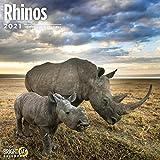 2021 Rhinos Wall Calendar by B...