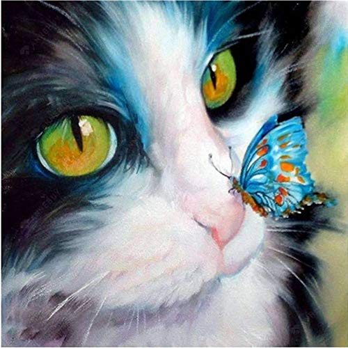 DIY 5D Diamond Painting by Number Kits for Adult,Full Round Drill Embroidery Cross Stitch Arts Craft Wall Decor Blue Butterfly Licking On Cat's Nose 11.8x11.8 in by Fairtie