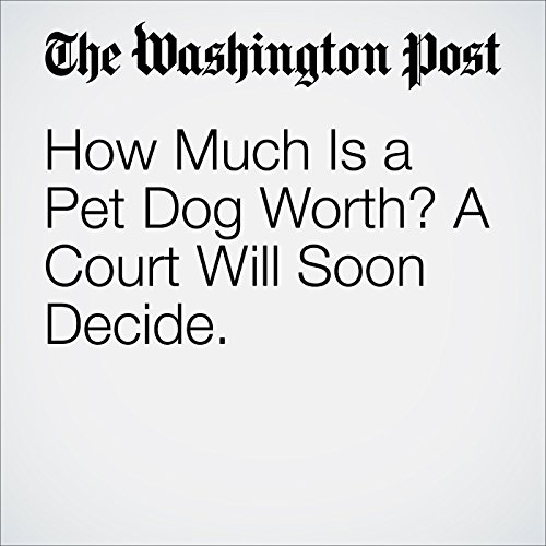 How Much Is a Pet Dog Worth? A Court Will Soon Decide cover art