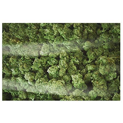 Felpudo para puerta de interior y exterior, un gran bolso de malas hierbas con respaldo de PVC antideslizante resistente, alfombra de entrada de bienvenida, lavable, 23,6 x 15,7 cm