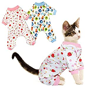 RYPET Small Dog Pajamas 2 Pack – Cute Cat Pajamas Onesie Soft Puppy Rompers Pet Jumpsuits Cozy Bodysuits for Small Dogs and Cats