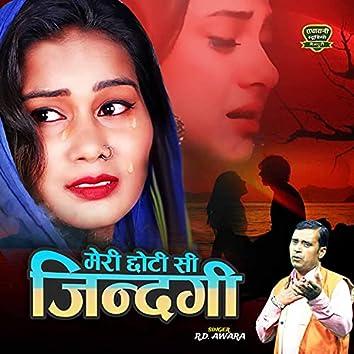 Meri Chhoti Si Zindagi Mein Kitne Gam Mile (Hindi Ghazal)