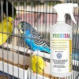 Geruchsneutralisierer Spray gegen Gerüche von Katzen-Urin - 4